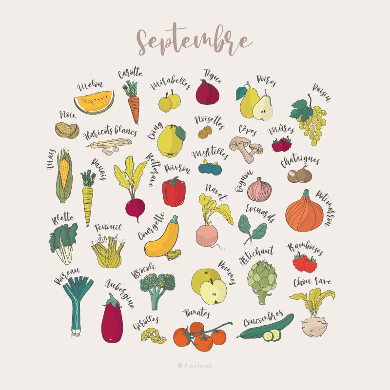 Illustration-fruits-et-légumes-de-saison